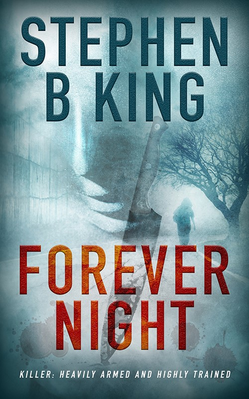 Stephen B King Book Forever Night